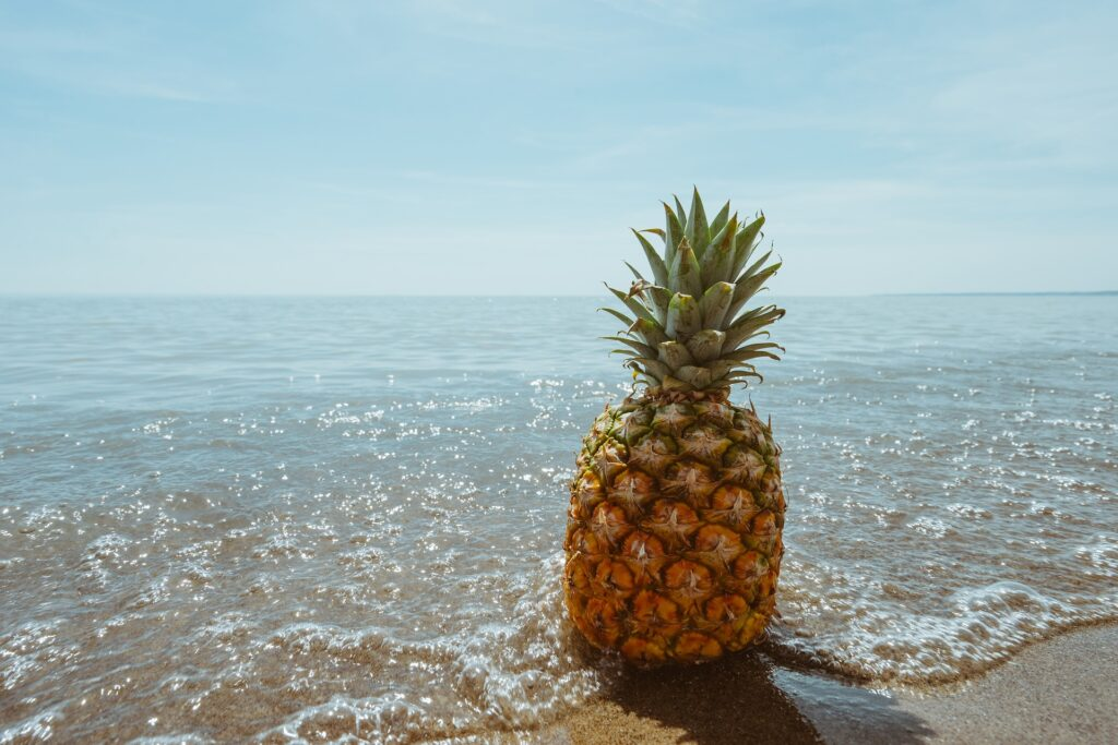 The Pineapple, Queen of Fruits!