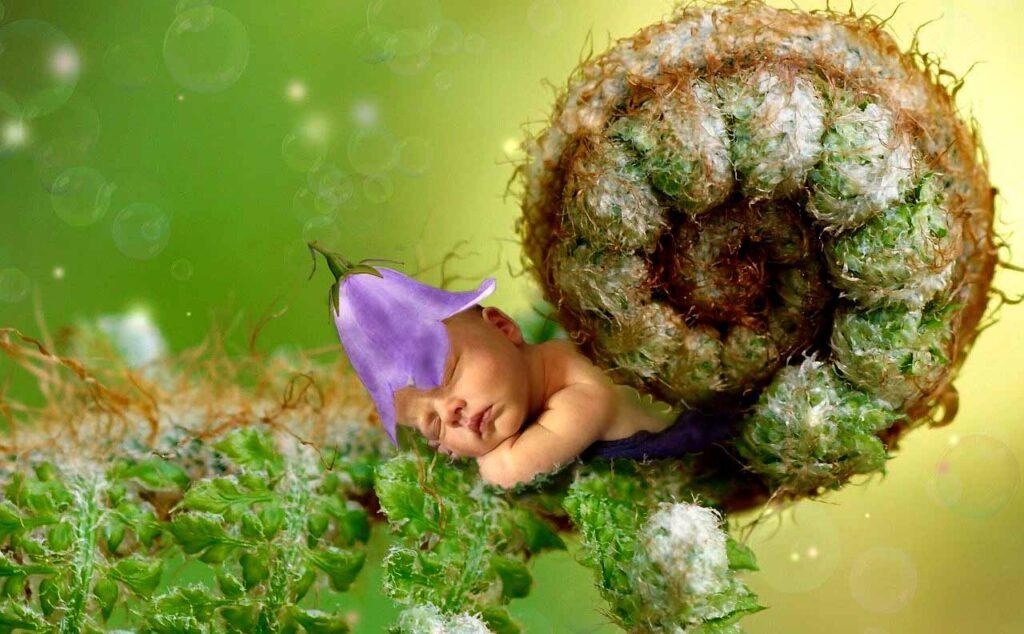 Tal Día como Hoy - Nacimientos - Los Secretos de Dorian