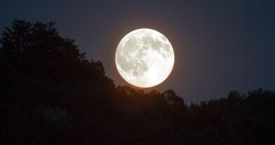 Enero 28: Luna Llena - Los Secretos de Dorian