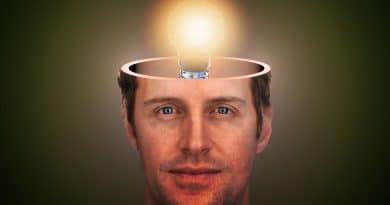 22 de Julio Tal Día como Hoy Día Mundial del Cerebro Los Secretos de Dorian: El Magazine de la Eterna Juventud